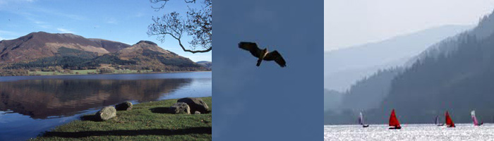 Bassenthwaite - nature and fun
