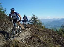 Mountain Biking at Whinlatter